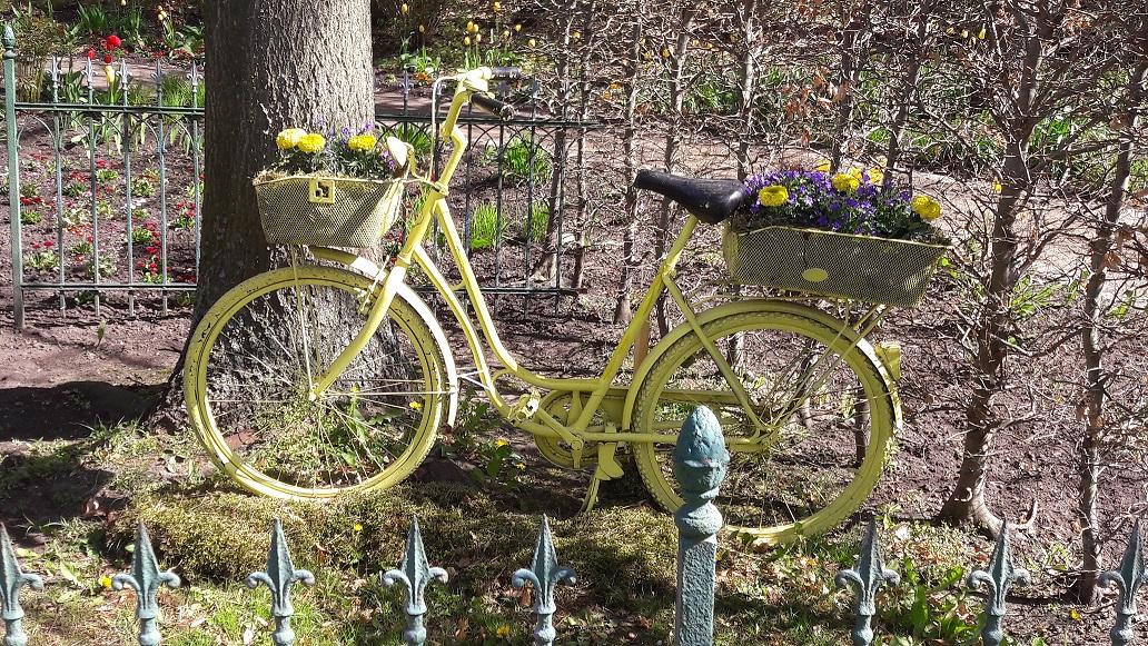 geschmücktes Fahrrad zum Tulpenfest, Thema Holland