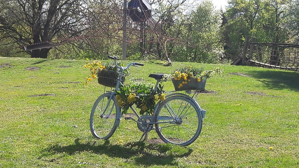 Blumenfahrrad zum Tulpenfest in Luckau